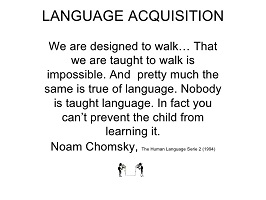 Photo of Noam Chomsky's theory of language development